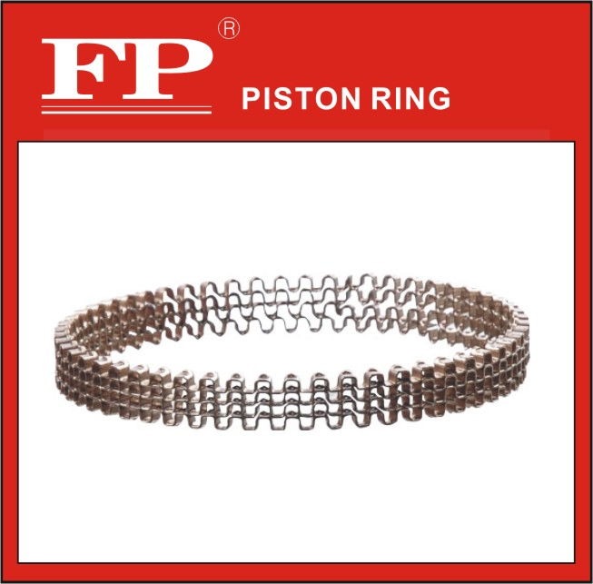FP RIK type oil ring